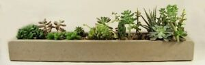 Long-Concrete-Tray-Concrete-Planter-Flower-Pot-Handmade-Home-amp-Garden-Decor