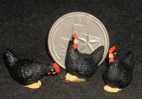 Dollhouse Mini Chicken Chickens Hen Hens Black 3 1:12 Barnyard Animal #A3170BK
