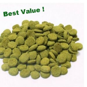 500-Algae-Wafers-tablets-75-free-Pleco-amp-bottom-fish-food-with-Spirulina