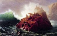 "Art Oil painting seascape Seal Rock & ocean waves - Albert Bierstadt 24""x36"""