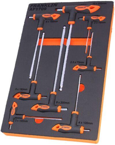 Franklin Outils 8 Pièce T-poignée Clé Hexagonale Ensemble Métrique 2-10 mm en Mousse EVA AF1709