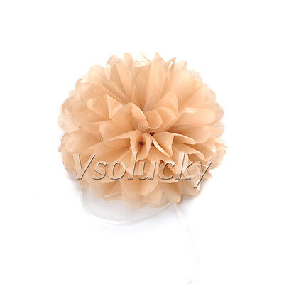 "5 Tissue Paper Pom Poms Flower Ball Wedding Party Xmas Decoration 6""/8""/10""/15"""
