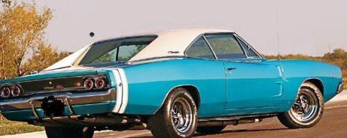 68 69 70 Dodge Charger WHITE BOAR Vinyl Top//Mopar New