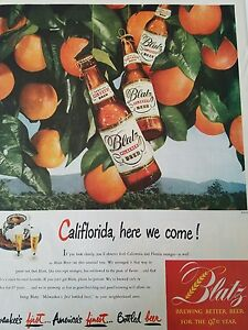 1948 blatz pilsener beer braun flaschen orange tree california here we come ad