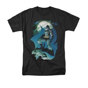 BATMAN-GLOW-OF-THE-MOON-Licensed-Men-039-s-Graphic-Tee-Shirt-SM-5XL
