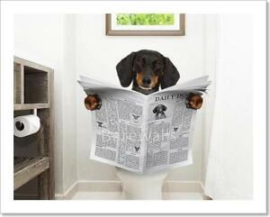 C Dog Sitting On Toilet Art Print Home Decor Wall Art Poster