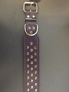 Allpet-Staffy-Studded-Leather-Dog-Collar-Purple