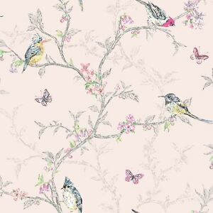 Fard-Rose-Phoebe-Oiseaux-Papier-Peint-Rouleaux-Holden-50141-Neuf