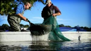 John-Hempton-Teach-a-Fund-Manager-to-Fish-Unique-Experience-on-Manning-River