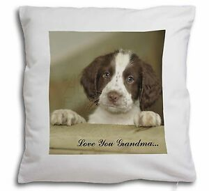Details about Springer Spaniel Pup 'Grandma' Soft Velvet Feel Cushion Cover  Wi, AD-SS76LYG-CPW