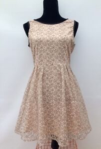 BNWOT-New-Designer-Henry-Holland-Floral-Lace-039-Fit-n-Flare-039-Skater-Dress-Fits-10