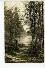 Lovers Lane—Solon Springs RPPC Antique Photo Forest Path Woods ca. 1913