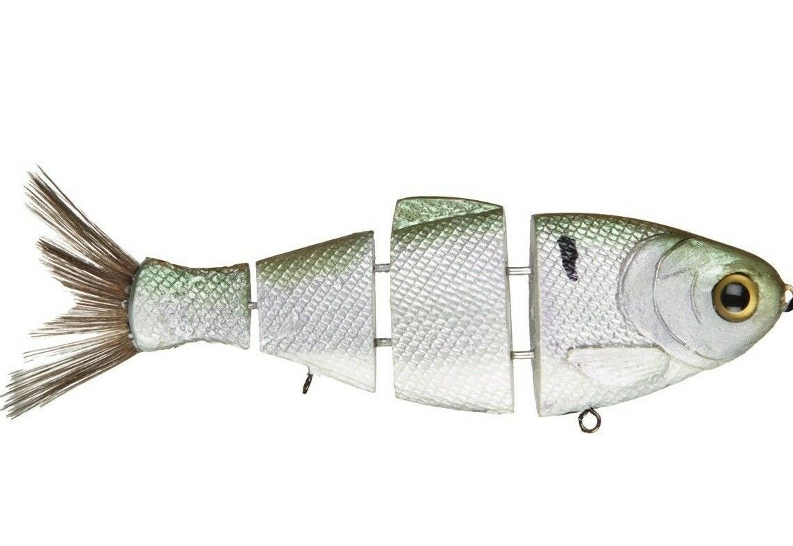 Bull Shad 6  Threadfin Shad Fast Sink Swimbait  - Mike Bucca Gen 2