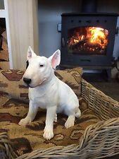 Real to Life Sitting English Bull terrier Bulls eye white bull terrier vivid