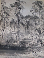dessin ile de Mindanao début du 20èmes