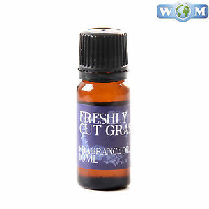 Freshly Cut Grass 10ml Fragrance Oil for Soap, Bath Bombs (FO10FRESCUTGRAS)