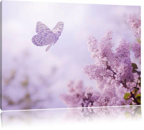 Petit papillon avant rose magenta Cerise Fleurs toile déco art