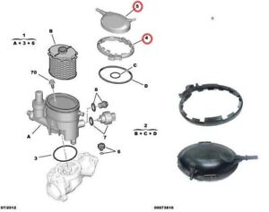 peugeot partner 206 306 1 9d dw8 fuel filter housing clamp lid 190426 190427 ebay. Black Bedroom Furniture Sets. Home Design Ideas