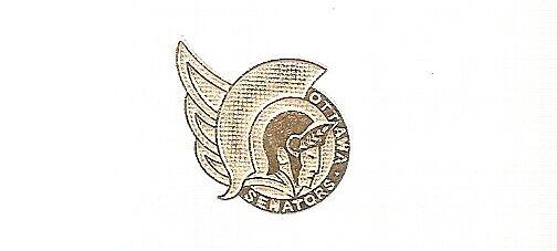 Ottawa Senators GOLD logo, NHL Hockey pin