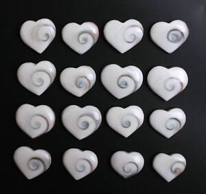 Wholesale-Price-10Pcs-Ninja-Symbol-Pendant-Conch-Shell-Fossil-love-Heart-Shape
