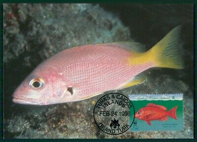 Aktiv Turks & Caicos Mk 1998 Fauna Fische Tropical Fish Pesce Peche Maximumkarte En44
