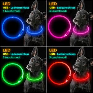 elanox-LED-Hundehalsband-wiederaufladbar-fuer-alle-Groessen-Hundehalsband-USB