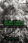 Gay Men in Modern Southern Literature: Ritual, Initiation, & the Construction of Masculinity by William Mark Poteet (Paperback, 2006)