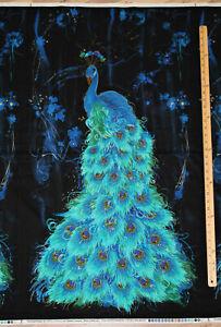 "Midnight Plume Peacock Feathers Cotton Panel  24"" x 43""  #C6409"