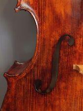 Violoncello Amati 4/4 Cello