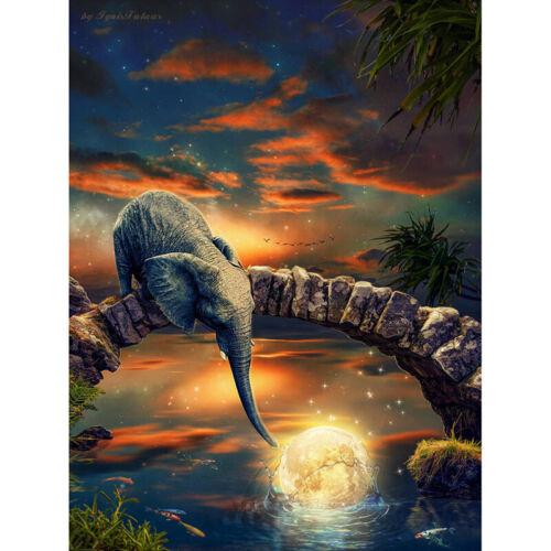 Taladro de Diamante Redondo completo de Pintura completamente bordado de Diamantes de Imitación Lindo Elefante