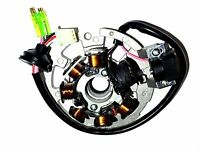 Magneto Stator Yerf Dog Atv 23000 90cc Quad Yerf-dog Youth Atv Generator