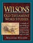 Wilson's Old Testament Word Studies by Professor of Law William Wilson (Hardback, 1990)