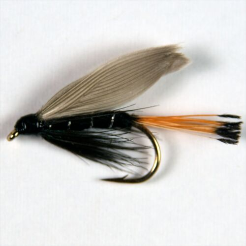 6 BLAE /& BLACK Wet Trout Fly Fishing Flies size options by Dragonflies