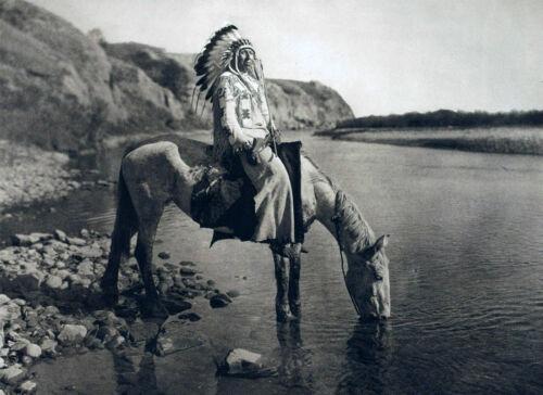 "Southwestern photo 14/""x11/"" 1928 NATIVE Blackfoot AMERICAN INDIAN Horses"
