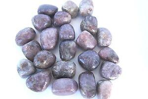 ONE-Lepidolite-Tumbled-Stone-Grade-B-25mm-QTY1-Brazil-Healing-Crystal