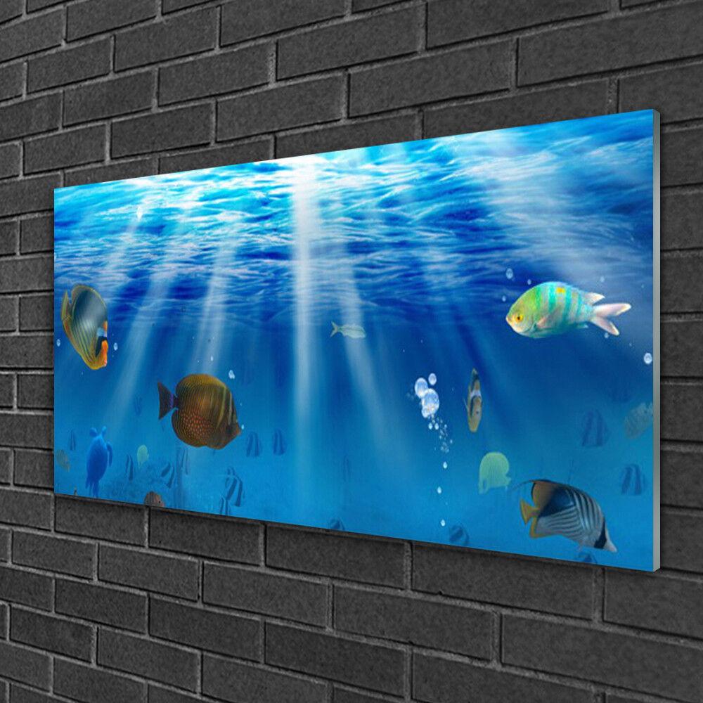 Image sur verre acrylique Tableau Impression 100x50 Nature Poissons