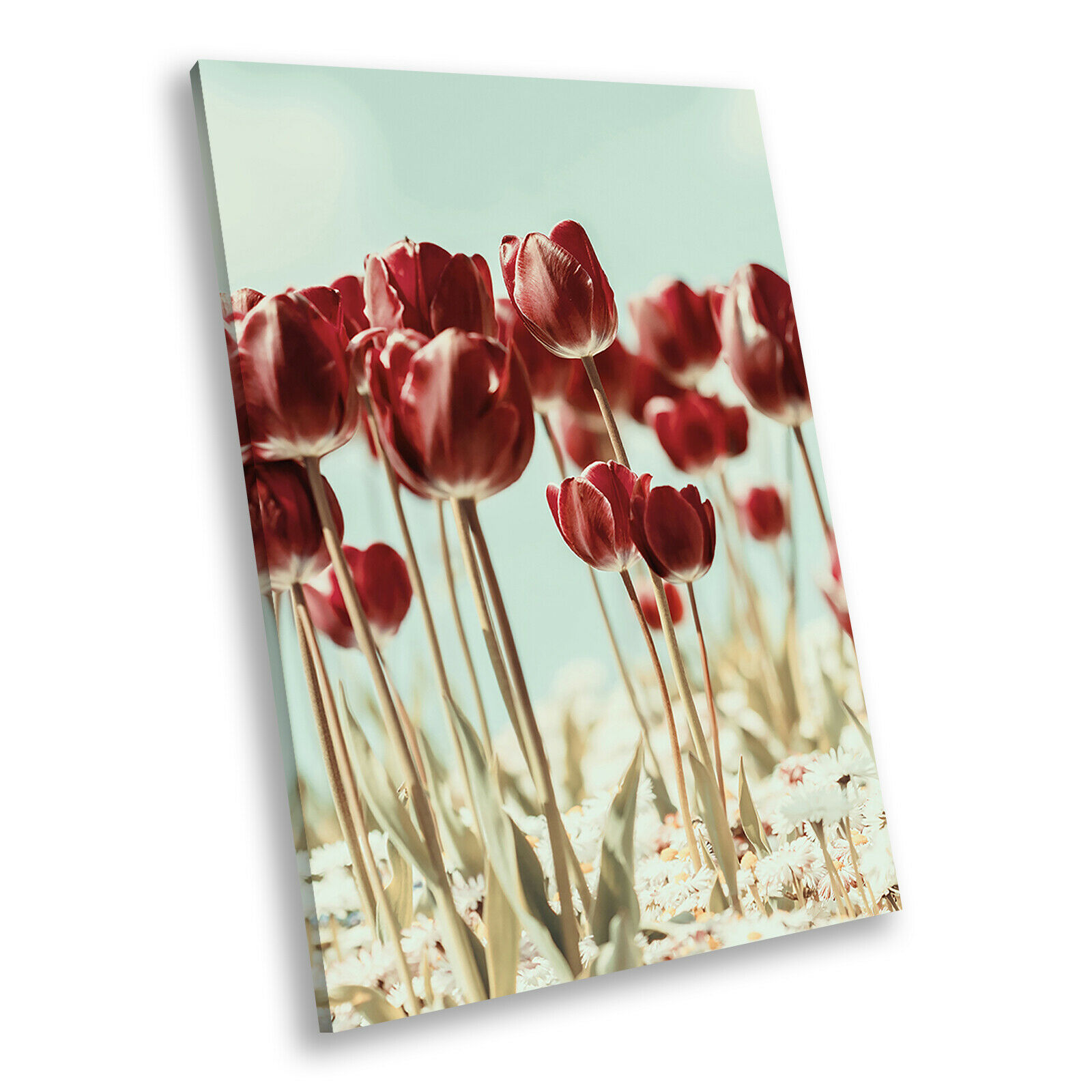 Retro rot Flower Portrait Abstract Canvas Wand Kunst Large Bild Druckens