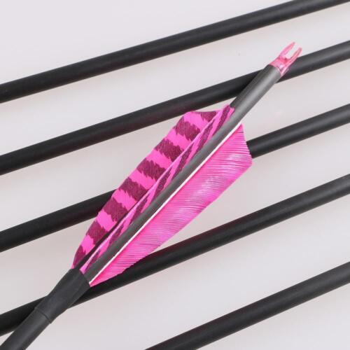 Archery Carbon Arrows Turkey Feathers Fletching Recurve Compound Bow Longbow