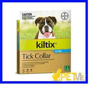 Kiltix Tick Collar For Dogs Review