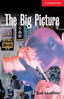 The Big Picture: Level 1: Level 1 by Sue Leather (Paperback, 2001)
