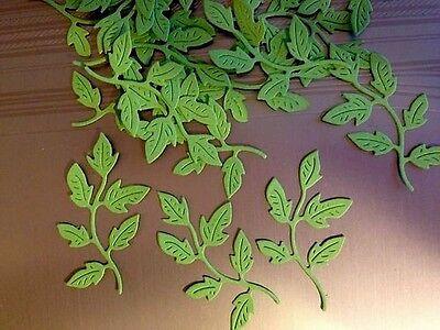 FOLIAGE. SCRAPBOOKS CARDS TEN Dark Green   LEAF FLOURISHES LEAVES