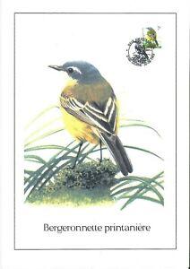 FDC-2725-Oiseau-Buzin-sur-gravure-format-A4