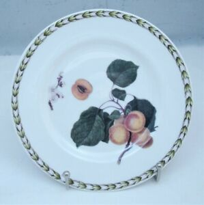 Queen-039-s-Horticulture-Society-Fine-China-HOOKERS-FRUIT-Bread-Butter-Plate-Apricot
