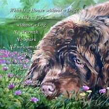NEWFOUNDLAND LIVER COLOUR DOG HARDBOARD PLAQUE TILE  PRINT SANDRA COEN ARTIST
