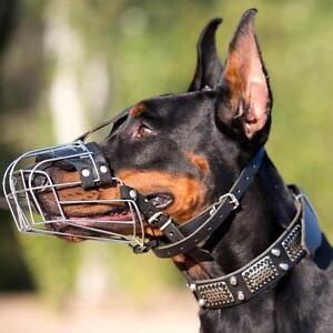 buy doberman muzzle uk bestseller padded wire basket dog muzzle
