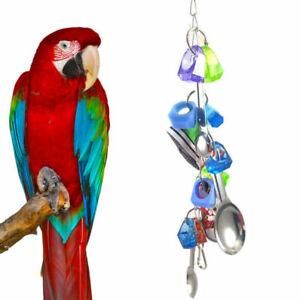 Papagei-Spielzeug-Turnschuhe-Vogel-Spielzeug-Metall-Loeffel-Schnur-Spielzeug