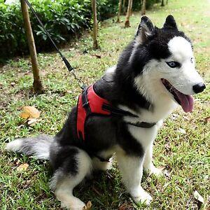 Large-Dog-Harness-Leash-Collar-Vest-For-German-Shepher-Husky-Labrador-Bulldog