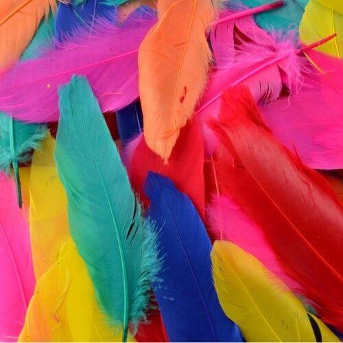 72 x Mezclado Color plumas de calidad ideal para manualidades
