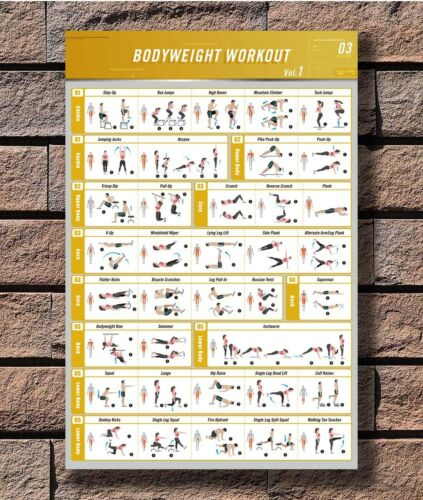 BodyBuilding Guide Fitness Gym Poster 12x18 24x36inch C-18 Bodyweight Workouyt