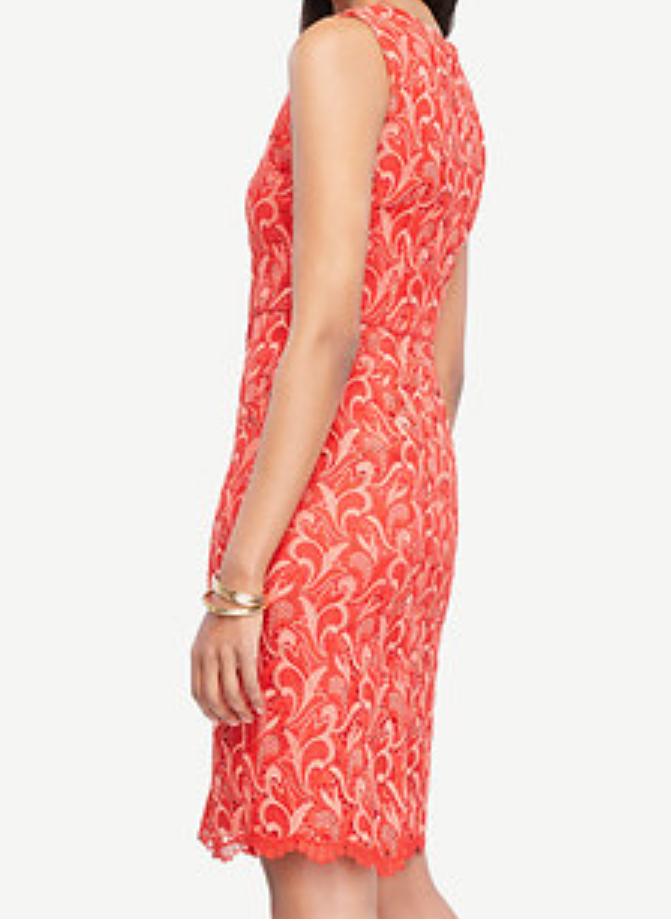 52678928793 ... 4 Ann Ann Ann Taylor Two Tone Lace Sheath Dress - NWT 198 Size 2P